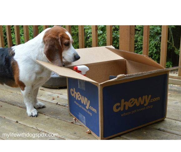 Chewy Box Arrived: Delicious Merrick Treats!