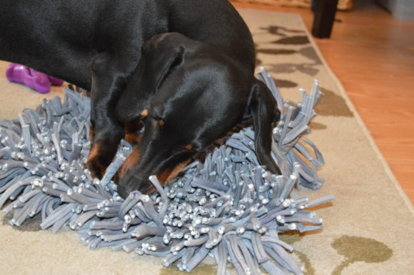 Snuffle Mat: Time to Hunt