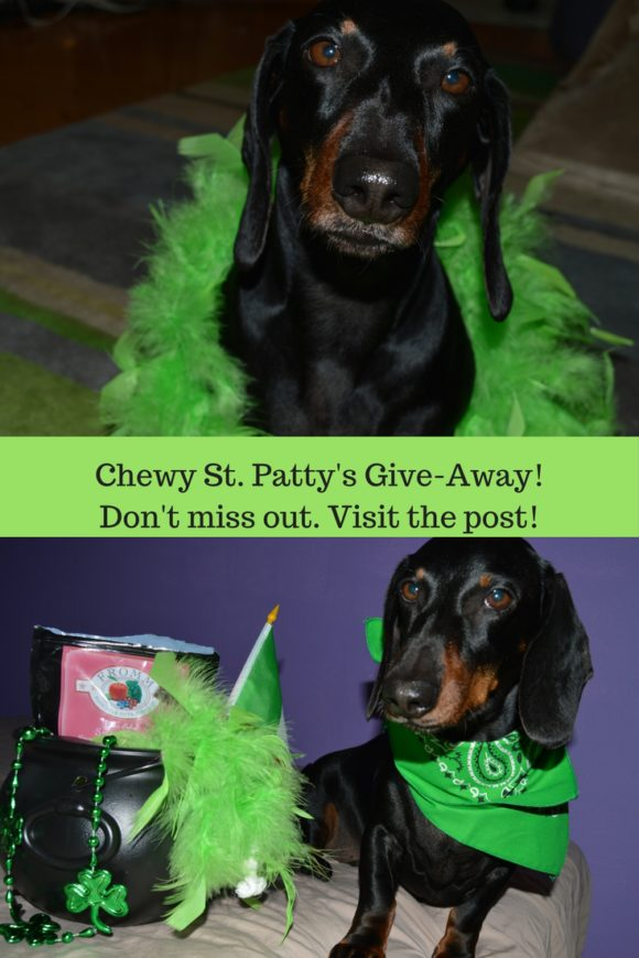 Chewy St. Patty's Give-Away! Don't miss out and enter in