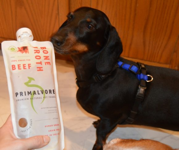 Primalvore Bone Broth: A Review with Senior Bruiser & the Hounds #ad